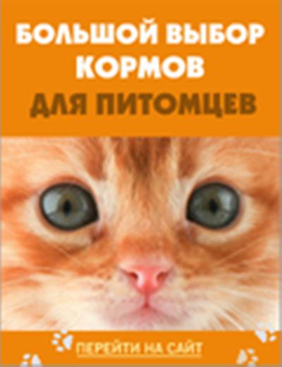 0 vastausta cashbackshopsru/chetyre-lapy http
